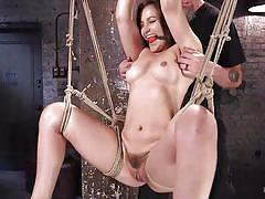 bdsm, babe, hogtied, vibrator, hairy pussy, suspended, ball gag, boobs groping, rope bondage, hogtied, kink, the pope, dani daniels