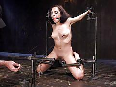 small tits, bdsm, babe, brunette, hairy pussy, ball gag, device bondage, metal bondage, electric vibrator, device bondage, kink, roxanne rae, the pope