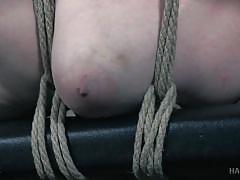 tattoo, blonde, bdsm, babe, pussy torture, bbw babe, rope bondage, electric vibrator, hard tied, hard tied, phoenix rose