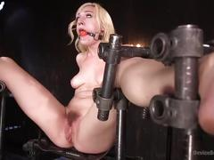 The pope ravages lily labeau.