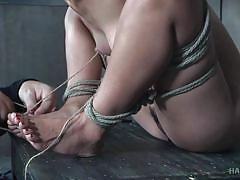 Japanese cuite is hard tied and pumped