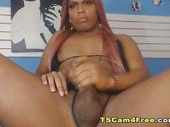 Hot ebony shemale strokes her shaft