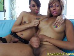 Sensual ebony tgirls tugging cock