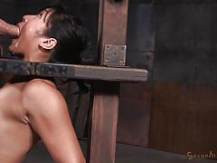 Curvy asian brunette getting fucked real hard