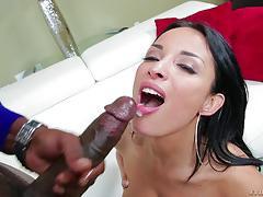 anissa kate, lexington steele, blowjob, cumshot, anal, reverse cowgirl, interracial, ass fuck, mature, tit wank, black cock, bbc