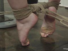 milf, bdsm, lesbians, babe, redhead, whipping, strap on, domination, fucked from behind, rope bondage, whipped ass, kink, kirsten price, amarna miller
