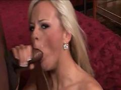 Bree olson sucks some black cock