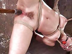 bdsm, babe, dildo, vibrator, suspended, ball gag, nipple clamps, rope bondage, head down, hogtied, kink, the pope, abella danger