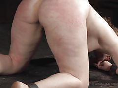 threesome, bdsm, babe, whipping, rope, ass spanking, device bondage, real time bondage, harley ace