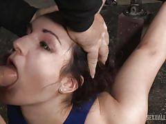 threesome, bdsm, babe, interracial, deepthroat, domination, vibrator, device bondage, sexually broken, matt williams, jack hammerx, endza adair