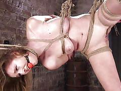 bdsm, babe, dildo, vibrator, suspended, ball gag, rope bondage, hogtied, kink, the pope, ashley lane