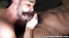 Ebony bear sucked off by hungry white lips