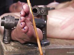 Naughty katharine gets awfully tortured