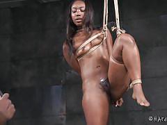 Hard rope bondage for black beauty