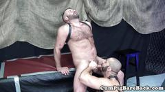 Leather loving bear asstoyed in sex swing