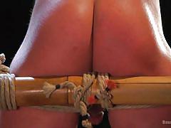 ass fingering, bdsm, tied up, whipping, big dick, domination, leather pants, blowjob, muscled, bound gods, kink men, jett jax, jordan boss
