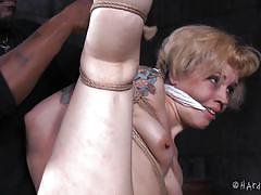 Tied and tried the fucking pleasure