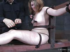bdsm, babe, crying, brunette, nipple clamps, device bondage, infernal restraints, harley ace