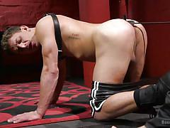 Muscled sex slave swallows hard dick