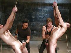 rope bondage, suspended, bdsm, whipping, handjob, foursome, domination, bound gods, kink men, connor maguire, van darkholme, abel archer, jonah marx