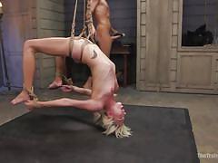 Tied up eliza jane ruthlessly ravaged