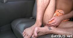 blowjob, anal, hardcore, gay
