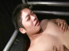 asian, bareback, anal, blowjob, gay, japanese