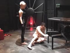 Ballbusting: mistress electra destroys the balls of andrea diprè