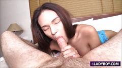blowjob, pov, small tits, pussy, asian, shemale, thai, ladyboy