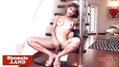 Sensual ladyboy playing with her cock