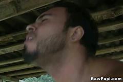 blowjob, latin, bareback, cumshot, hardcore, gay