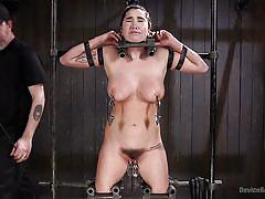 bdsm, babe, punishment, busty, vibrator, fingering, hairy pussy, nipple clamps, metal bondage, device bondage, kink, the pope, karlee grey