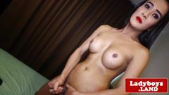 Busty ladyboy tugging dick on her bed