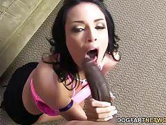 Busty babe anissa kate prefers huge black cock
