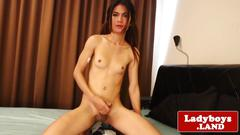 Solo ladyboy spreading ass before tugging