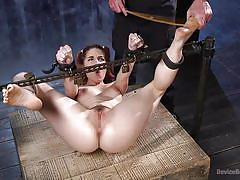 caning, bondage, bdsm, submissive, babe, torture, redhead, tickling, hairy pussy, bondage box, device bondage, kink, the pope, amarna miller