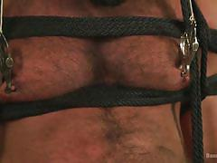 gay, bdsm, torture, bondage, shibari, bear, sideways, pinching, suspension, caning, bound gods, kink men, trenton ducati, steven roman