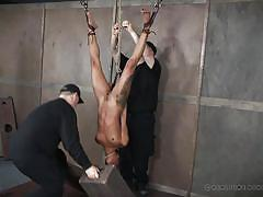 tattoo, threesome, bdsm, black, babe, interracial, domination, suspended, upside down, weights, real time bondage, nikki darling
