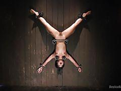 Bound upside down and obliged to cum by her master