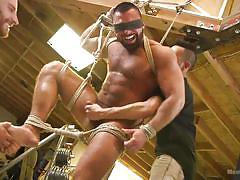hairy cock, tied up, handjob, rope bondage, sex toy, threesome, blowjob, suspended, garage, men on edge, kink men, steven roman