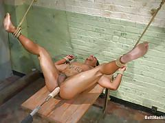 gay, solo, fucking machine, rope bondage, bdsm, anal, dildo, latino, naked, butt machine boys, kink men, lobo