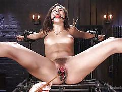 bdsm, hairy, babe, whipping, bound, domination, tickling, speculum, ball gag, feet torture, device bondage, kink, the pope, abella danger