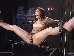Abella danger is getting ready to suffer