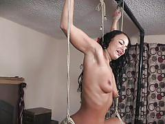Bondaged latina cums while hanging from the ceiling