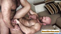 bear, anal, closeup