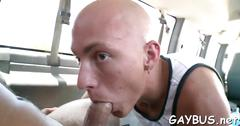 Lusty transaction with homo anal movie 3