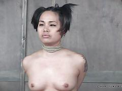 small tits, milf, blonde, threesome, bdsm, babe, asian, whipping, hairy pussy, executors, rope bondage, real time bondage, lorelei lee, milcah halili