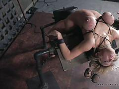 milf, blonde, big tits, fucking machine, executor, device bondage, weights, rope bondage, real time bondage, dee williams