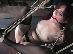 Ariel begs her master for more punishment