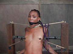 threesome, bdsm, babe, ebony, interracial, vibrator, breathplay, blindfolded, nipple clamps, ball gagged, rope bondage, real time bondage, nikki darling